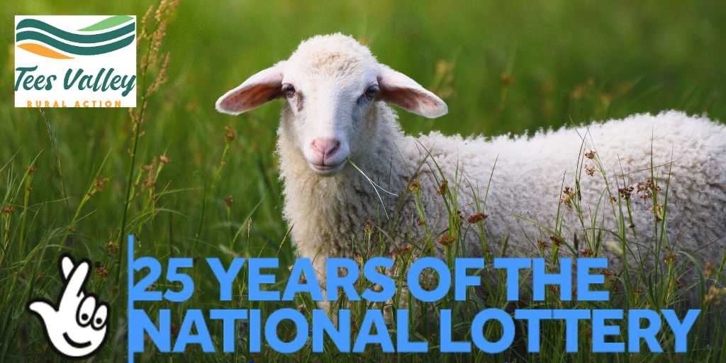 The National Lottery 25 years Celebration